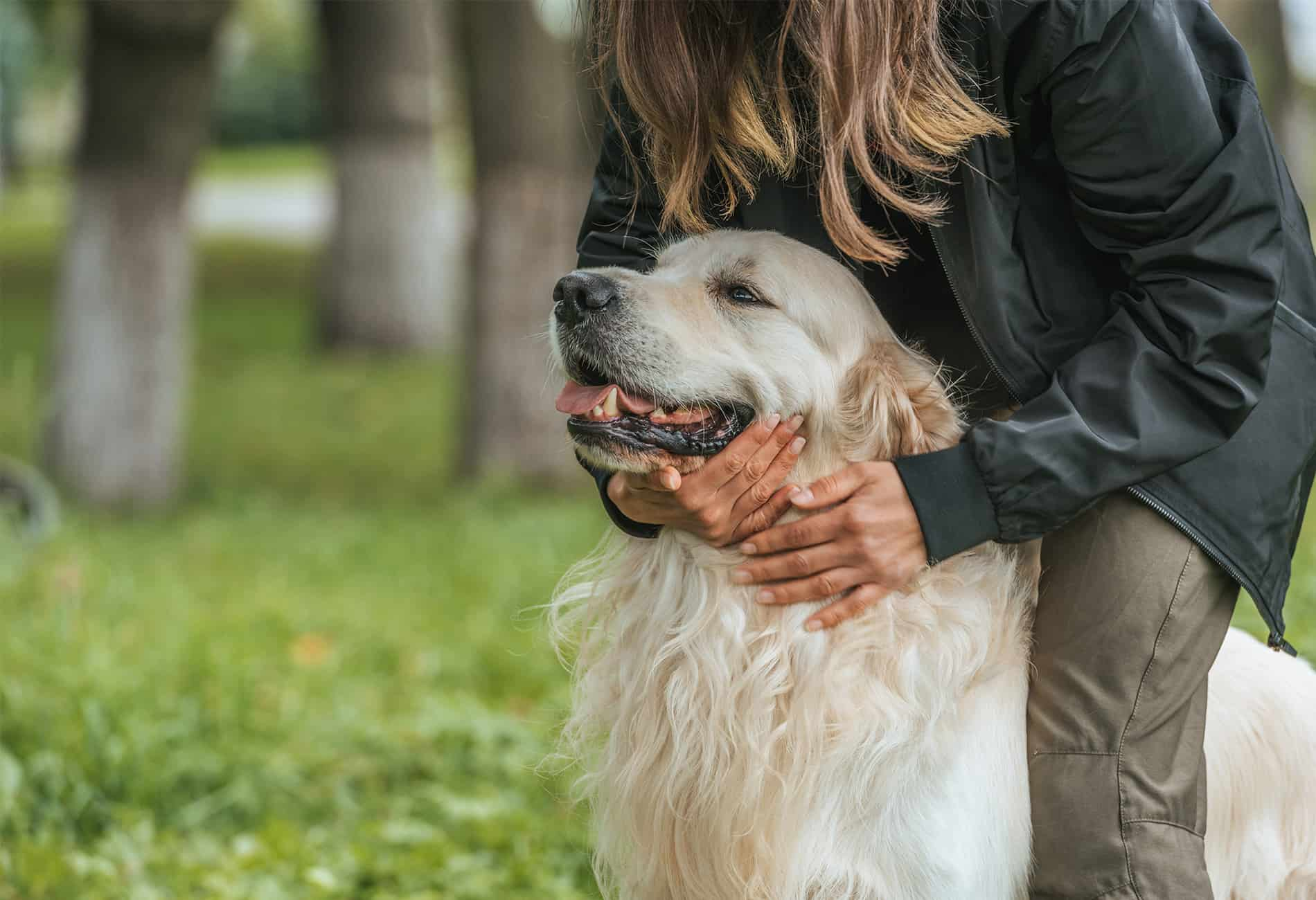 Why choose Pup Culture Dog Walking and Cat Sitting?